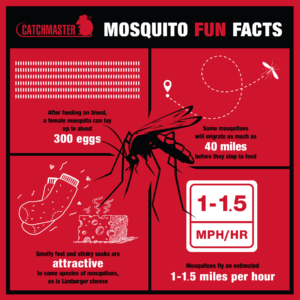 CDC Mosquito Control Statistics - Fun Facts